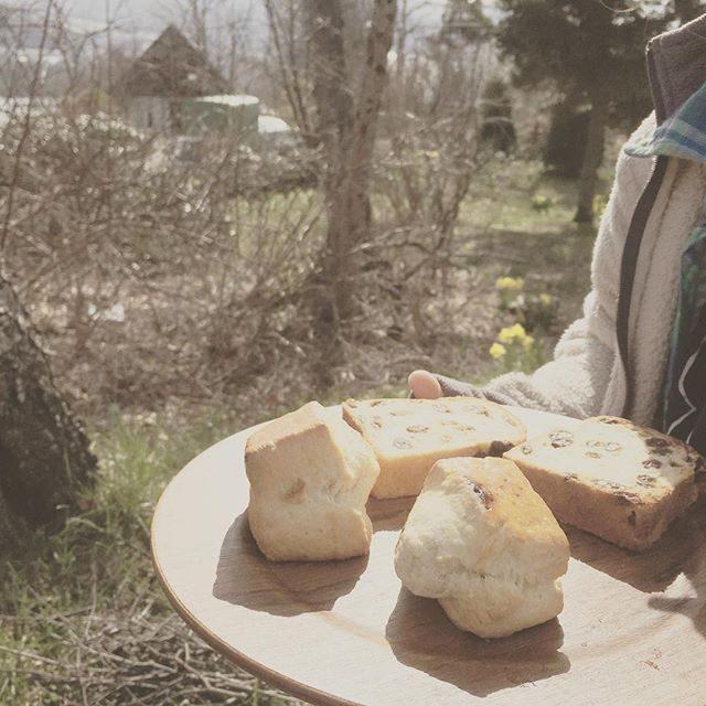 グリルパンと炭火を使って発酵いらずの パン 作ってみた。パンというか スコーン。奥のは 持ってきた ブレドールのパン昨日は スーパー行く時間なかったけどなんとか なるもんだ。お昼は 子供たちが釣った 魚。#パンづくり#キャンプ#菅平 #長野 #朝食#アウトドアクッキング#子育て#ゴールデンウィーク#グリルパン#魚釣り (Instagram)
