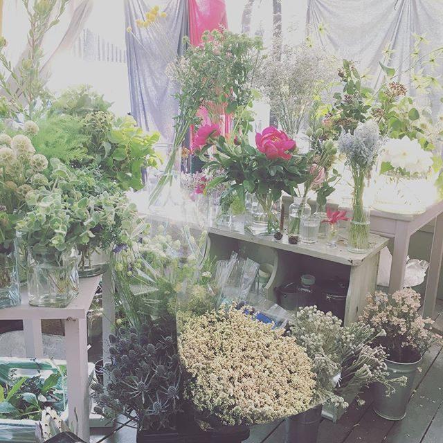 明日は この季節ならではの芍薬を使って七五三お祝い花 作ってくれるそうです@leplaisir_leplaisir さんはアーティスト肌につき当日 急遽変更サプライズもあるのでお花と彼女に 身を任せていると 本当に楽しい!Weddingで忙しいのに引き受けてくれて ありがとう!! #お花屋さん#アミーゴキッチン#amigokitchen #七五三#お祝い花#出張撮影#ロケーションフォト #湘南#葉山#逗子#s芍薬 (Instagram)