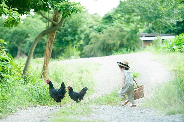 Farm 🐓🐓**ALKU'MI -olive-オリーブの花言葉は 平和たくさんの小さな実をつけて力強いエネルギーを放っていた農園のシルバーオリーブの木から企画タイトルをいただきました。7/1 施設料+ミニ撮影料金にて2組 募集しています。お問い合わせは @alku_mi さんまで#farm#出張撮影#ig_japan #ロケーション撮影 #kidsphotography #湘南#写真好きな人と繋がりたい #写真撮ってる人と繋がりたい #パラダイスフィールド#子供写真#summer#葉山女子旅 #itophotography#olive#アルクウミスタイリング #親バカ部 #コドモノ#ハンドメイド子ども服#ミニ撮影#life#シンプルなくらし#子育て (Instagram)