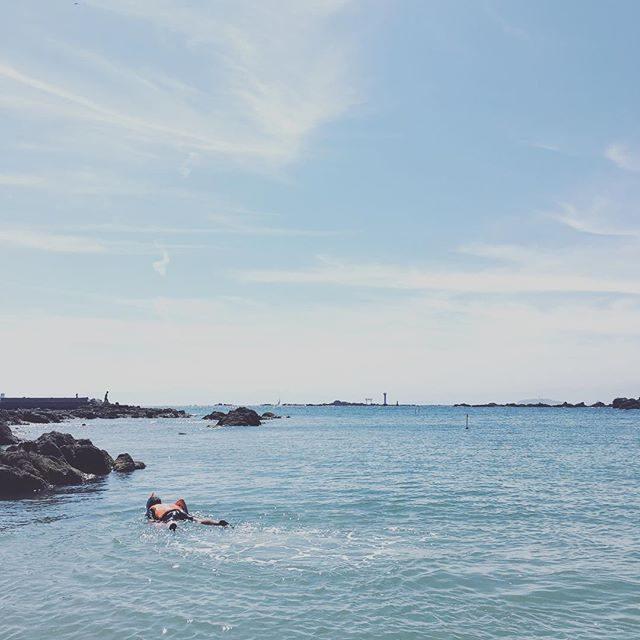 マンタ 浮遊中陸上がない今日は朝活海までジョギングして サクッと入水。夏休みは SUPに シュノーケル色々やりたいことがいっぱいのようです。#朝活#シュノーケル#夏休み#葉山#beach#sea#我が家のマンタ#小学5年生#boy#summer (Instagram)