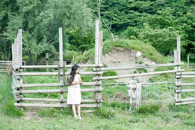 匿名希望の山羊 A子🐐ALKU'MI -olive-いつもいただく野菜がどんな風にできているのか土に触れ 動物たちと触れ合う体験を家族やお友達と 是非一緒に。衣装があるので 都会から来ていただいてもお着替えして 思いっきり汚したって へっちゃらなのです。農園でのものがたりづくりお問い合わせは @alku_mi さんまで#farm#農園#子供写真#kidsphotography#山羊#湘南#ig_japan #ig_kids #子供写真#夏休み#summer#summervacation #写真好きな人と繋がりたい #写真撮ってる人と繋がりたい #ファインダー越しの私の世界 #匿名希望#simplelife #シンプルなくらし #お誕生日記念 (Instagram)
