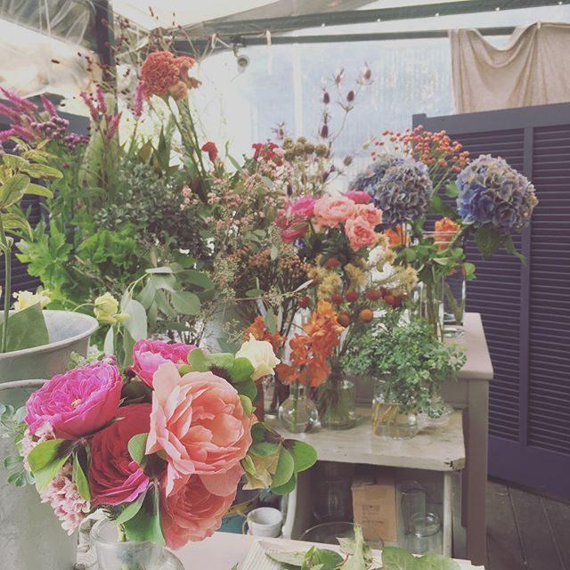 夏休み明けて久しぶりにオープンした@leplaisir_leplaisir さんのお花屋さんここでのお花の受け渡しがやっぱり 大好き♩@_amigomarket_ さんでランチをサッと食べて農園へ 出発〜🐓#明日もお世話になります#お花屋さん#出張撮影#flower#bouquet #pink#逗子#湘南 (Instagram)