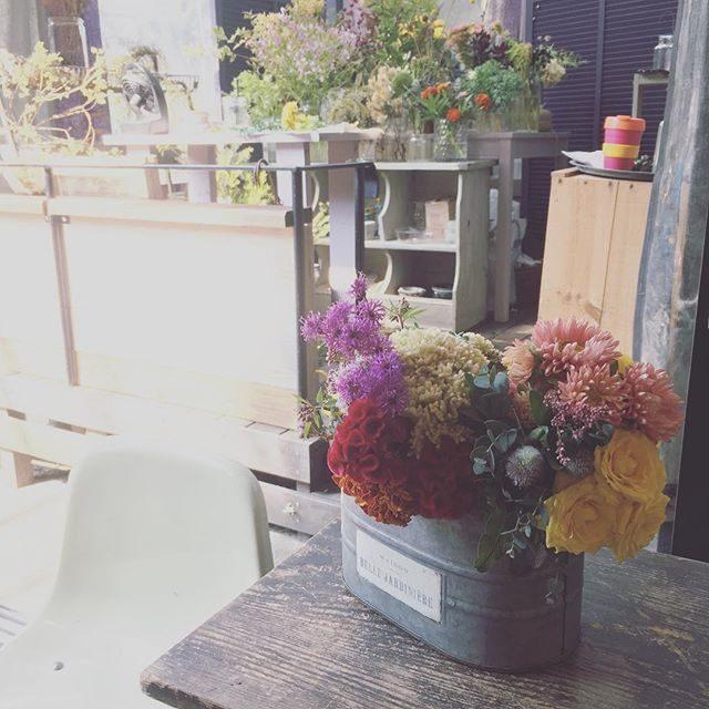 本日の七五三お祝い花主役のお子様の雰囲気や撮影場所 お着物に合わせて用意してくれる@leplaisir_leplaisir さんのお花スタイリング。今年は このお花を楽しみにしてくださっていたりmikkoさんのファンの方だったりで ママも喜んでくださる方が多くて とっても嬉しいのです。お花はいつも@_amigomarket_ さんで買えます。#お花屋さん#七五三#bouquet #逗子#子供写真#出張撮影#お祝い#葉山#湘南#flowers (Instagram)
