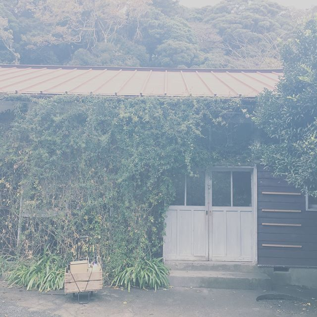 雨宿りしながらの撮影。幼稚園のお寺で七五三記念のものがたり。先生をはじめ お寺の方々みなさん温かくて ほっこり。#鎌倉#七五三#七五三撮影#出張撮影#ロケーションフォト#幼稚園#雨宿り#湘南#ig_japan (Instagram)