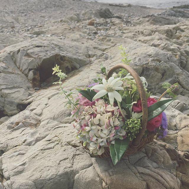 12月最初の @leplaisir_leplaisir さんのお祝い花ほぼ毎日のようにお着物に合わせて作り続けてくれて感謝しかないです。#ありがとう#秋紫陽花#bouquet #七五三#七五三撮影 #出張撮影#3歳 (Instagram)