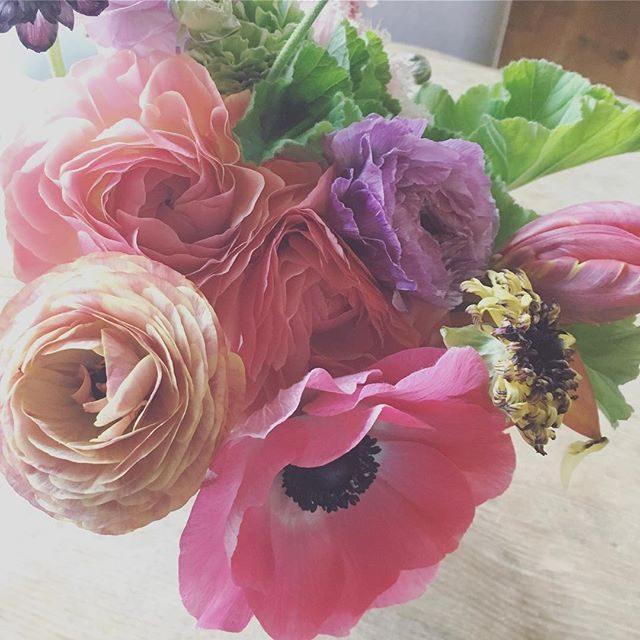 お客様から色とりどりの花束とお手紙をいただいた。現像も遅れててご迷惑ばかりかけているのに。。あたたかい心が嬉しくてお花を眺めていると今年の撮影は まさにこんな色だったなぁとしみじみ振り返る時間もないのに振り返る。お花をいただくのって本当に嬉しい。@leplaisir_leplaisir さんのお祝い花。来シーズンはまた 新しいことをやってみようと思っています。#出張撮影 #bouquet #お花のある暮らし#逗子#アミーゴキッチン#leplaisir (Instagram)