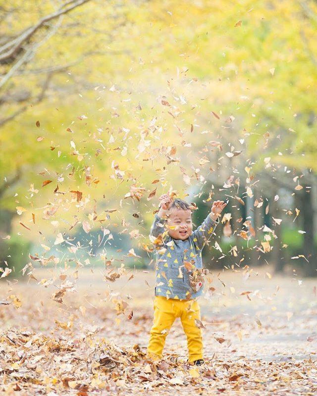 うみとやまのこどもとしょかん企画「もりのかくれんぼう」全ての現像が終わりました!気分は もう こんな感じです。撮影の時間まで コツコツストレージにアップロードしてメールを送ります。 #朝から達成感#秋#出張撮影#ロケーションフォト#写真好きな人と繋がりたい#写真撮ってる人と繋がりたい #ファインダー越しの私の世界 #kidsfashion #fall#コドモノ#子育て#絵本#湘南#育児#うみとやまのこどみとしょかん#葉山 (Instagram)