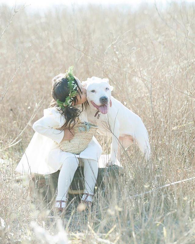 来年は戌年🐕ワンちゃんと一緒のものがたりづくりも@alku_mi さんのお洋服でものがたりを描くように残せたらいいなーと。#出張撮影#戌年#ロケーションフォト#写真好きな人と繋がりたい#写真撮ってる人と繋がりたい#dog#white#子ども写真#湘南#葉山歩き#葉山#kidsphotography#東京カメラ部#コドモノ (Instagram)
