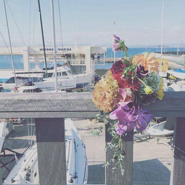 年末撮影 カウントダウン今年ラストの triccaさんと森戸神社⛩素敵なご縁を たくさん結んでいただき感謝の気持ちでいっぱいです。@leplaisir_leplaisir さんのお祝い花は 明日が年内お祝い納め #出張撮影#葉山マリーナ#成人式#bouquet#葉山#湘南#森戸神社#森戸大明神#成人式#七五三後撮り (Instagram)