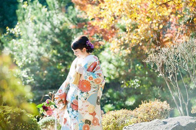 一緒にチームを組んでくださる方とのご縁ができて和装ウェディングのご予約もお受けできるようになった去年。今年も着物を通して 住んでいる町の美しさをたくさん発見できたらいいなぁと。#出張撮影#ロケーションフォト#結婚式#和装前撮り#花嫁#ブライダル#プレ花嫁#葉山#日本庭園#着物#前撮り#写真好きな人と繋がりたい#写真撮ってる人と繋がりたい #湘南#ウェディング#itophotography#色打掛#鎌倉 (Instagram)