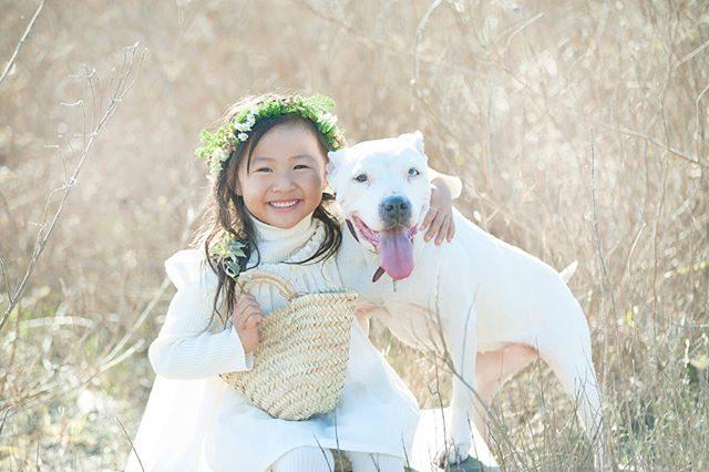 幸運を招く オッドアイ。今年は戌年ということでワンちゃんと一緒に記念のものがたりをたくさん綴りたいなぁと。#今年もよろしくお願いします#出張撮影#きょうのわんこ#子ども写真#写真好きな人と繋がりたい#写真撮ってる人と繋がりたい#湘南#葉山#dog#winter#ロケーションフォト#familyphoto#itophotography#alkumi#レンタル衣装 (Instagram)