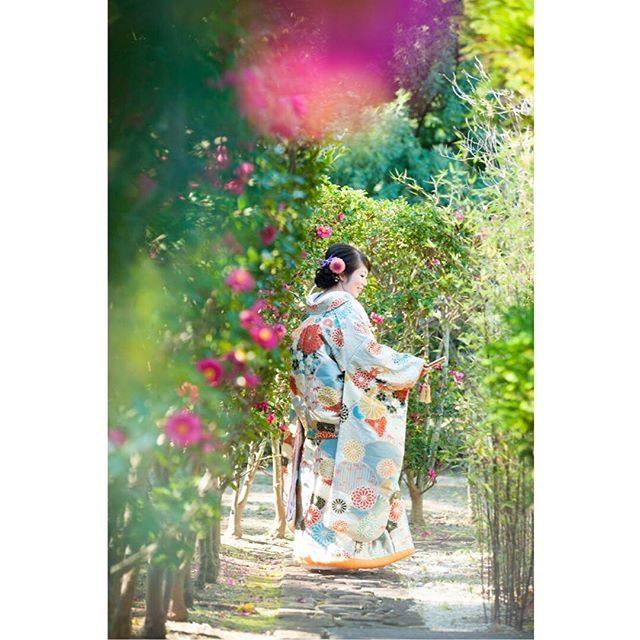 山茶花と花嫁。#ウェディングフォト#bridal#前撮り#湘南ウェディング#葉山ウェディング#日本庭園#出張撮影#写真好きな人と繋がりたい#写真撮ってる人と繋がりたい#結婚式前撮り#和装前撮り#和装#和装結婚式#ロケーション撮影 (Instagram)