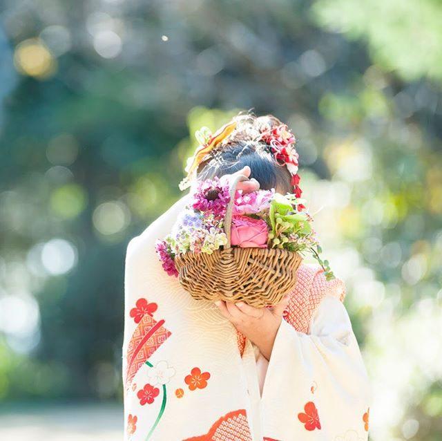 今日から お祝い始め。鎌倉で七五三からスタート。@leplaisir_leplaisir さんのお祝い花今シーズンもお子様ひとりひとりの雰囲気やお着物の色や柄撮影場所に合わせて記念の一日に寄り添います。#bouquet#kidsphotography#ロケーションフォト#写真撮ってる人と繋がりたい#写真好きな人と繋がりたい#七五三撮影#葉山#湘南#子ども写真#子育て#出張撮影#ブーケ#鎌倉 (Instagram)