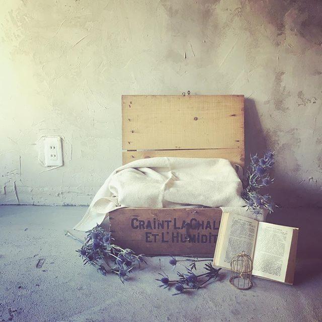 先週 骨董市でお得にゲットした木箱さっそく♪#出張撮影#大江戸骨董市#蚤の市#アルクウミ#itophotography#子ども写真#鎌倉#アンティーク#アンティーク雑貨#東京 (Instagram)