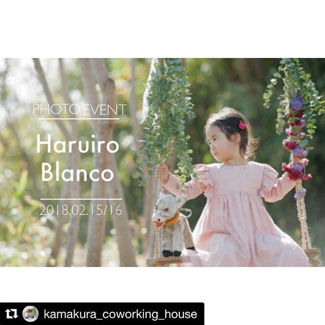 Haruhito blanco2/15、16 @kamakura_coworking_house さんでのセール期間中あたたかいお部屋で春色のブランコ ミニ撮影会。5組以上での開催になります。卒園 入園 お誕生日の記念に♪ご予約 お問い合わせ 詳細は@kamakura_coworking_house さんまで。#出張で撮影#ブランコ#お誕生日記念#写真好きな人と繋がりたい#写真撮ってる人と繋がりたい#鎌倉#コワーキングハウス#春#子育て#卒園記念 (Instagram)