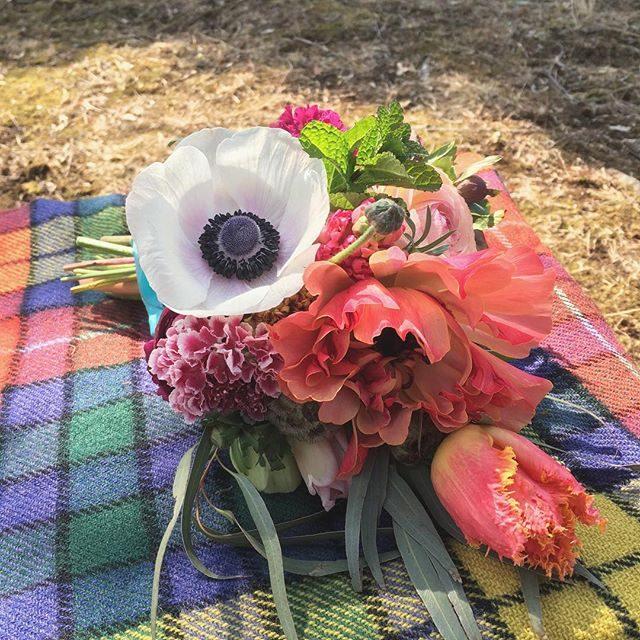 結婚10周年記念のお祝い花急な早朝の撮影でも現場に届けてくれる@leplaisir_leplaisir さん。そうそう !子だくさんな家族の10年ってきっとこんな感じ!いろんな可愛らしい花がギュッと集まって賑やかで あったかい。細かいことを言わなくても直前のオーダーでもちゃんと伝わる作家さんが近くにいる心強さ。#感謝しかない#ブーケ#結婚記念日#結婚10周年#湘南#葉山#アミーゴキッチン#出張撮影#ロケーションフォト#bouquet#flower#spring (Instagram)