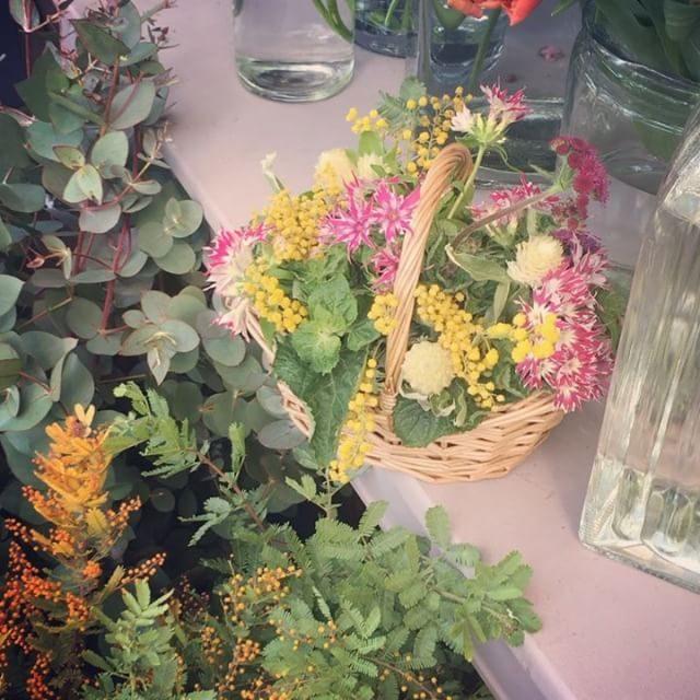 お祝い花持ってガタゴト電車。撮影前の癒し。ラナンキュラスが可愛かった♪#出張撮影#flower#bouquet#子ども写真#逗子#葉山#横浜#ご自宅撮影#kidsphotography (Instagram)
