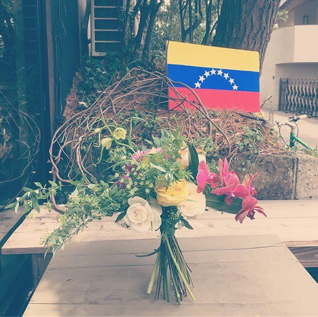 ベネズエラ day と撮影 day。@_amigomarket_ さんは異国の雰囲気漂い@leplaisir_leplaisir さんのお祝い花は立派に立ってました。 #金婚式#ベネズエラ#南米#出張撮影#アミーゴキッチン#ロケーションフォト#逗子#葉山#湘南#bouquet (Instagram)