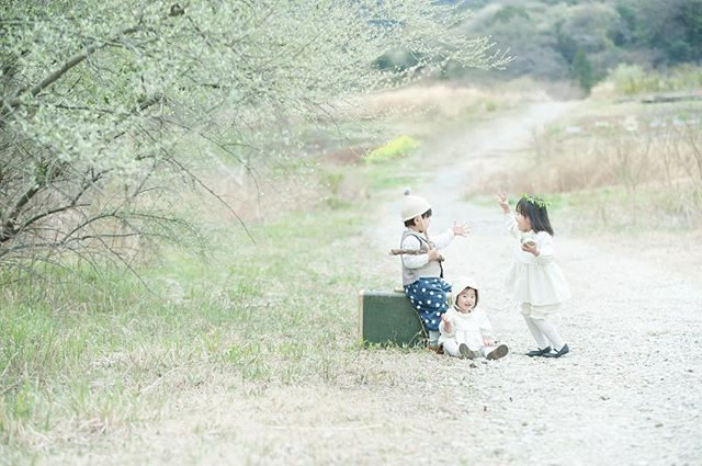 オリーブの新芽がとってもやさしい色でした。#farm#農園#出張撮影#ロケーションフォト#写真好きな人と繋がりたい#写真撮ってる人と繋がりたい #kidsphotography#東京カメラ部 #ママリ#子ども写真#1歳#birthdayphoto#湘南#葉山#鎌倉#nature (Instagram)