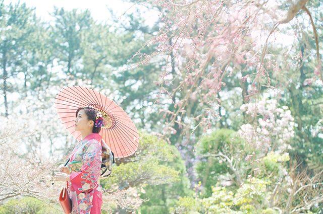 春の和装撮影。#出張撮影#spring#成人式#ロケーションフォト#前撮り#和装撮影#湘南#葉山#spring#着物#写真好きな人と繋がりたい#写真撮ってる人と繋がりたい#東京カメラ部#ポートレート部#成人式前撮り#triccabalcony (Instagram)