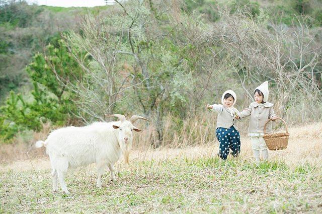 安心してください私 ちゃんと 繋がってますよ🐐#農園の山羊シリーズ#レタッチしてます#リード消してます#出張撮影#ロケーションフォト#farm#kidsphotography#アルクウミスタイリング#安心してください#湘南#鎌倉#写真好きな人と繋がりたい#写真撮ってる人と繋がりたい#写真加工#前撮り#birthdayphoto#東京カメラ部 (Instagram)
