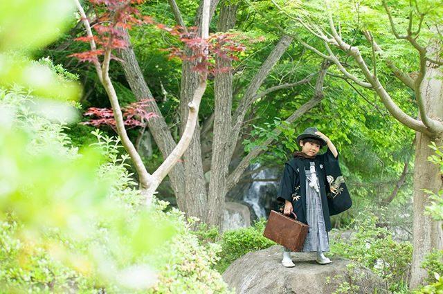 年中赤いもみじと滝。夜寝ている間に天気予報が変わったらしくザーザー雨の音で目が覚める。。なんとか晴れてほしい。。 #七五三#七五三撮影#七五三前撮り#写真好きな人と繋がりたい#ロケーションフォト#ig_japan#写真撮ってる人と繋がりたい#kidsphotography#着物#和装撮影#湘南#鎌倉#子ども写真#5歳#葉山#東京カメラ部 (Instagram)