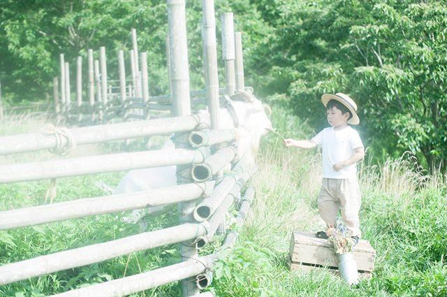 何かの拍子でレンズフィルターに日焼け止めクリーム混合の汗がついてしまってさらにフィルターかかっちゃった一枚と慌てて汗を拭いた後の一枚。真夏の思い出。。山羊さんたちにそろそろ会いたいな🐐#ロケーション撮影#出張撮影#写真好きな人と繋がりたい#写真撮ってる人と繋がりたい#フィルター#汗フィルター#暑かった夏#東京カメラ部#farm#子育て#シンプルライフ#農園#湘南#葉山#キッズモデル#kidsphotography#kidsphoto#お誕生日記念#コドモノ#ママリ#子育て (Instagram)