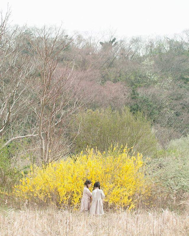 25日は晴れ予報️@alku_mi さんとの農園ミニ撮影イベントは遠方からのご家族が多くびっくりしています。アルクウミさんが農園に滞在する時間は限られていますが午後15時くらいまででしたら撮影可能ですのでご希望の方がいらっしゃいましたらお時間ご相談ください。#出張撮影#ミニ撮影イベント#写真好きな人と繋がりたい#農園#湘南#秋#ハンドメイドこども服#kidsphotography#コドモノ#キッズモデル#コドモノ#ロケーションフォト (Instagram)