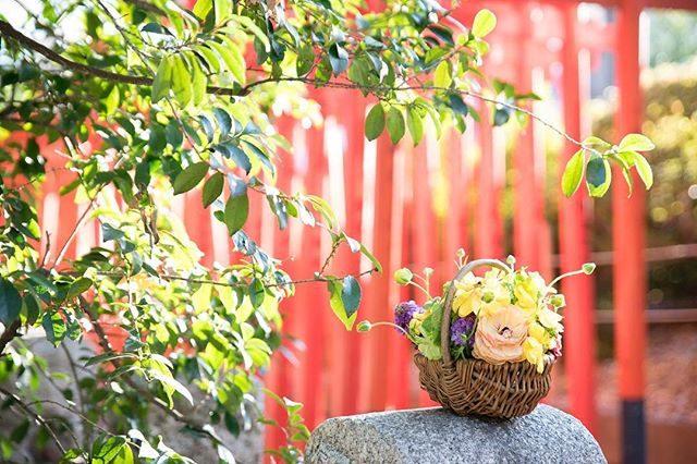 都内や遠い場所での出張撮影でもできる限り 生花を用意してくれる@leplaisir_leplaisir さん。生花に込められた想いと願い伝わりますように♪今日は 雨予報が くもりに変わったので撮影終わったら ちょこっと東京見物して帰ろう#ふたつとない作品#出張撮影#flower#ig_japan#七五三#ロケーションフォト#写真撮ってる人と繋がりたい#写真好きな人と繋がりたい#3歳七五三#お江戸 (Instagram)