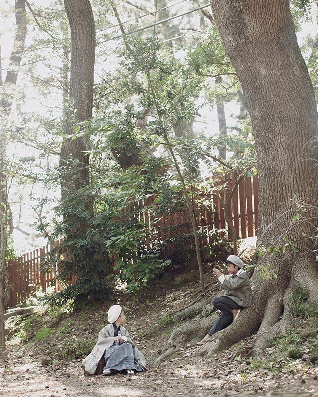 神社仏閣にある 木を眺めるのが好きです。たまに お子様を 座らせちゃうこともあります🌳#神社仏閣#出張撮影#七五三#写真好きな人と繋がりたい#七五三撮影#ロケーションフォト#前撮り#湘南#ハンドメイドこども服#レンタル着物#コドモノ#ママリ#kidsphotography#ig_japan#着物#igersjp (Instagram)