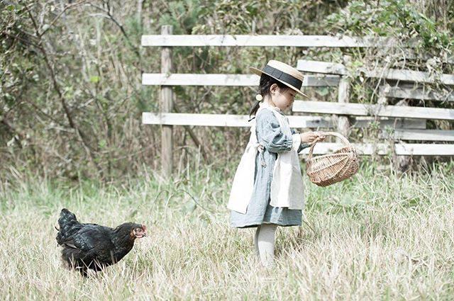 「とにかく写りたがり屋の鶏🐓」 #出張撮影#ロケーションフォト#farm#キッズフォト#ig_japan#igersjp#写真好きな人と繋がりたい#写真撮ってる人と繋がりたい#birthdayphoto#お誕生日#親バカ部#キッズモデル#4歳#コドモノ#tocotoco (Instagram)