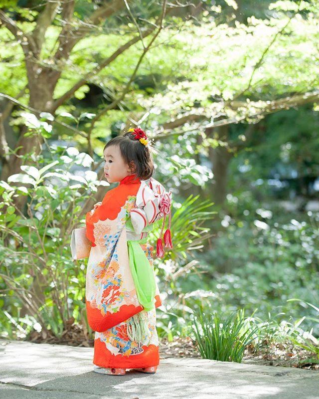 三歳 帯 頑張ったね♪お色直しはお被布で雰囲気を変えて。#出張撮影#七五三#3歳#七五三撮影#写真好きな人と繋がりたい#ig_kids#着物#ig_japan#kimono#ロケーションフォト#鎌倉#アンティーク着物#コドモノ#キッズモデル (Instagram)