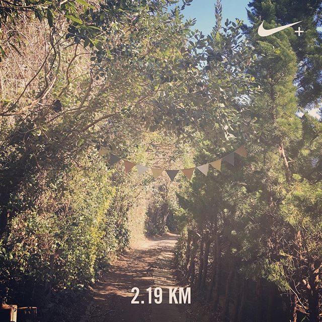 あまりにもポカポカで八幡宮横から北鎌倉で折り返しスタジオまで 出勤前ジョギング♀️復路で2.19kmなので往復4.3kmくらいのコース。最後の心臓破りの坂が地獄。。ゴールに元気な笑顔があると嬉しい。それにしても 撮影直前まで汗が引かないくらい今日は とにかく暑かった。#ジョギング記録#走った記録#北鎌倉#出勤前の#ジョギング初心者#スタジオホーム (Instagram)