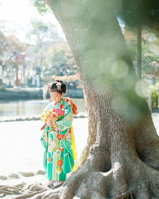 昨日は @tsumugu__poetess_studio のメンバーが集まって昨年の反省点 今年からの改善点これから やってみたいことたくさん話し合いました。インスタグラムで 他のアカウントにも投稿できるという機能が付いたそうで早速 やってみました。#出張撮影#ロケーションフォト#写真好きな人と繋がりたい#鶴岡八幡宮#七五三#七五三前撮り#七五三撮影#七歳#葉山七五三#鎌倉#キッズモデル#ig_japan#着物ヘア#コドモノ (Instagram)