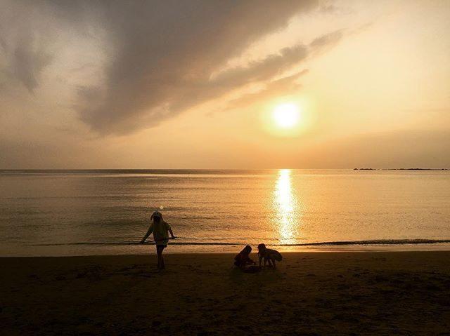 明日も 午前と午後のハシゴ撮影につき気持ちをリフレッシュ♀️お向かいのお姉ちゃんに娘たちを託して 3キロだけ走る時間をもらって大満足♪汗かいているのに日が沈むまで帰らないーと言うからカラダ 冷え切る。。#ジョギング#sunsettime#sunset#葉山歩き#葉山走り#ig_japan#葉山女子旅きっぷ#子育て (Instagram)