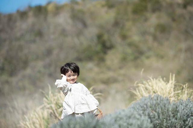 ラベンダー畑と。#出張撮影#ロケーションフォト#写真好きな人と繋がりたい#写真撮っている人と繋がりたい#農園#ig_japan#キッズモデル#kidsphotography#ラベンダー#tacktacktack#ハンドメイド子ども服 (Instagram)