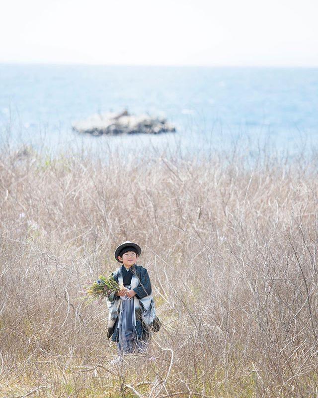 男の子のご記念にもお祝いのお花をお着物はレンタルなので同じですが季節や 撮影場所によってお花の雰囲気が違うのでいつも新鮮!#出張撮影#ロケーションフォト#5歳#七五三#七五三前撮り#レンタル着物#海辺#葉山#葉山歩き#着物#キッズモデル#コドモノ#sea (Instagram)