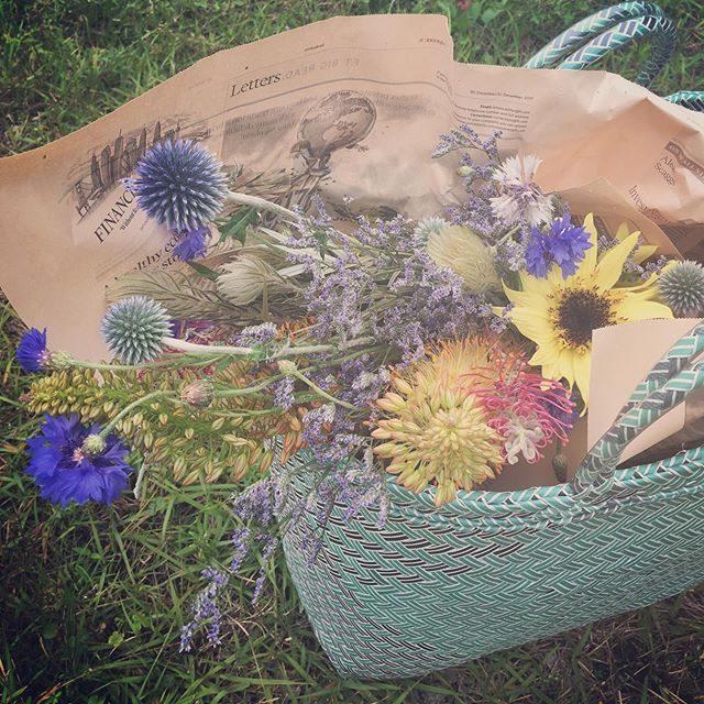 メルカドバッグはいっぱい持っているんだけれど@_amigomarket_ さんでびっくりお得な価格だったのでついつい購入したインドネシアの 大きなカゴバッグ。電車で出張する撮影の際に使おうと思っていたけれどいつもの撮影でも 大活躍!お花ブランコ用の花材もたっぷり スッポリ入ってお花が潰れない!ちょっと 大きすぎるかなーというくらいがちょうどよかった。#インドネシアカゴ#カゴバッグ#ひまわり#sunflower#逗子#出張撮影#メルカドバッグ (Instagram)